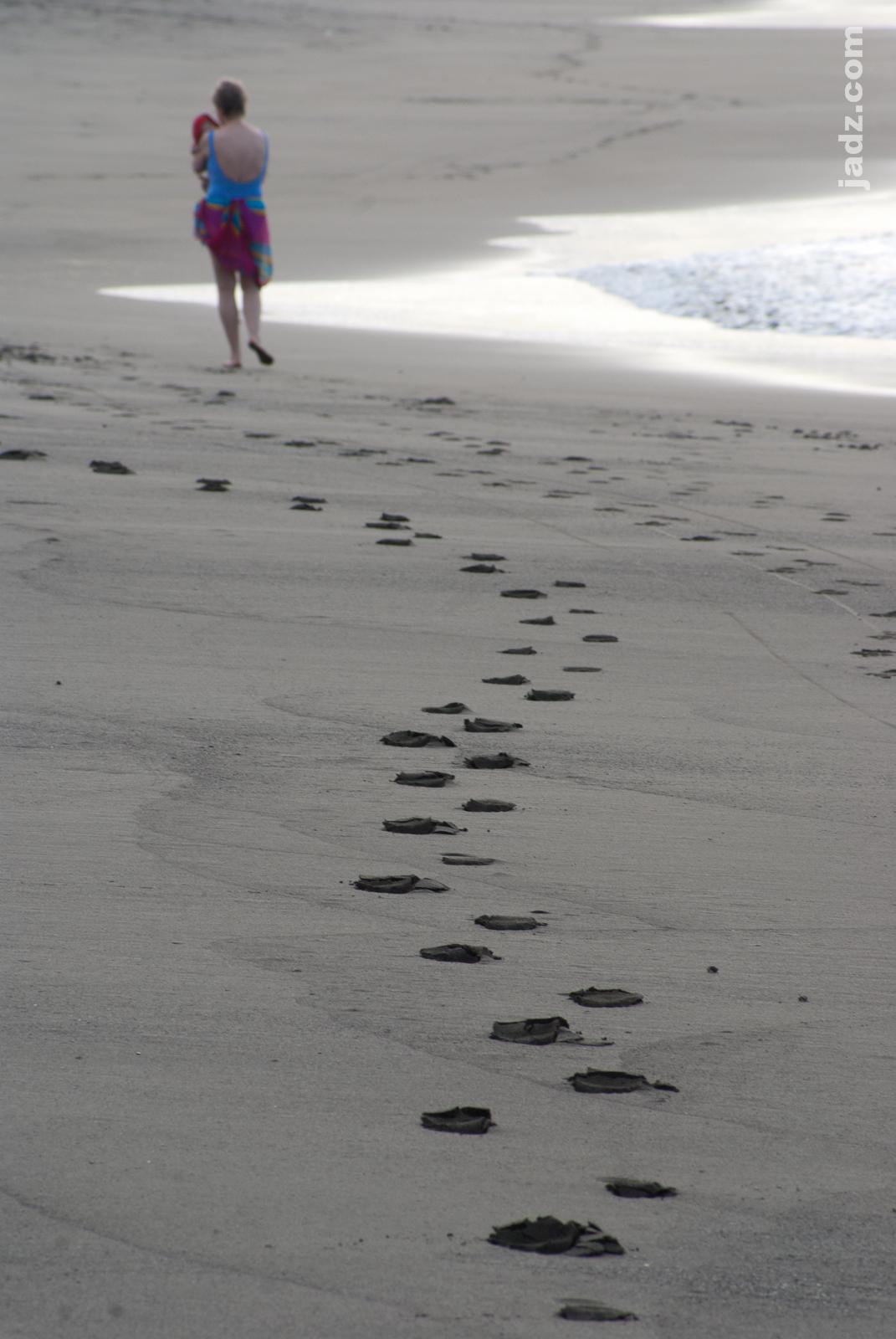 Horse Hoofprints